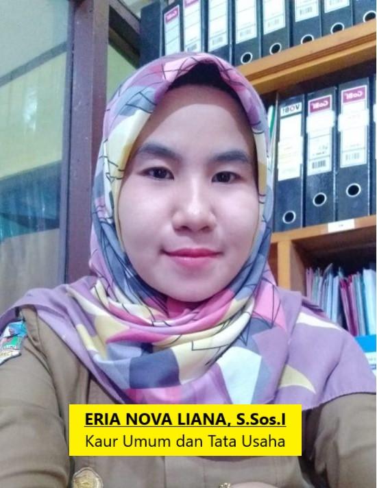 ERIA NOVA LIANA, S.Sos I